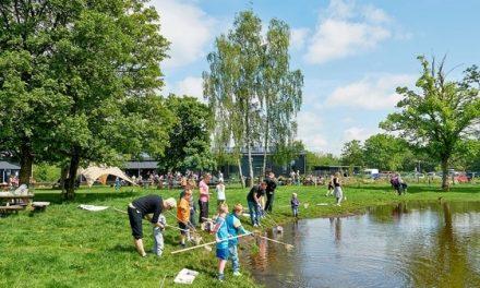 Grøn sommer i Randers og omegn
