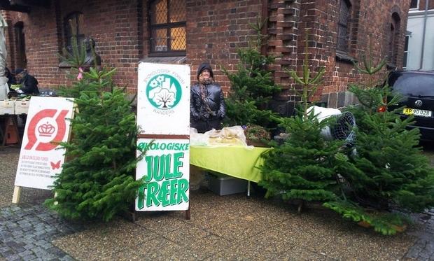 juletræer sælges
