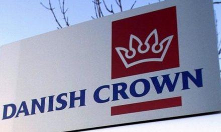 Danish Crown fastansætter syriske flygtninge
