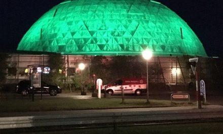 Lys på kuplerne i Randers Regnskov