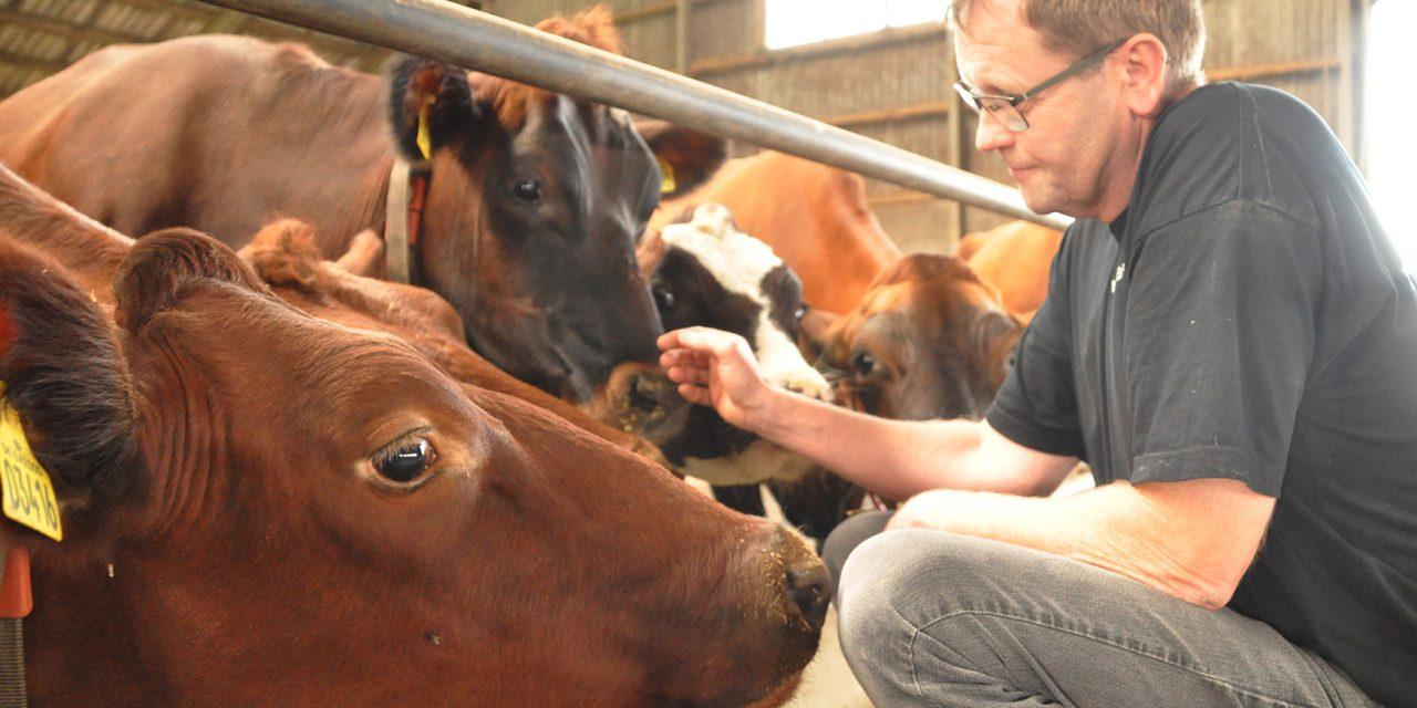 Landmand åbner dørene for konventionelt landbrug