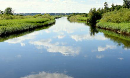 Randers : Planen for Danmarks næste store vandrerute er på plads