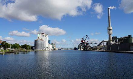 Randers Havn må notere dyk i overskuddet