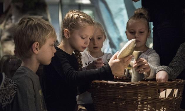 Ferie-flov – tag på oldtids-sjov