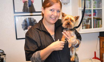 Uddannet hundefrisør med ny salon