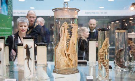 Naturhistorisk udstilling i Randers Storcenter