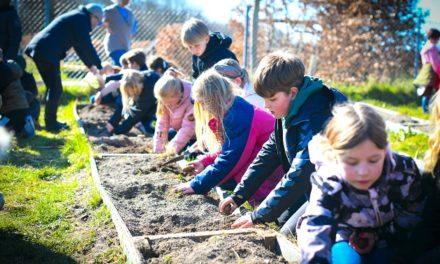 """""""Plant-et-træ-dag"""" fik elever op på mærkerne"""